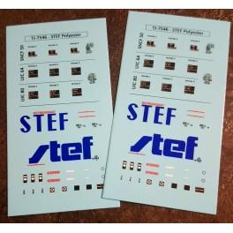 TJ-7546d - Décals réfrigérant STEF polyester
