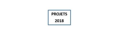 Projets 2018, modèles à venir